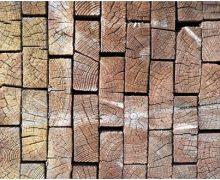 Don't Fear Wood Rot, Seek Specialist Help