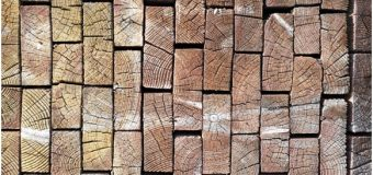 Don't Fear Wood Rot, Seek Specialist Help
