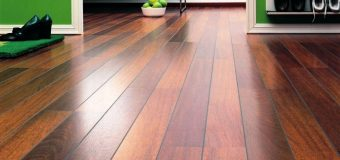 Locate Your Alternative to Expensive Woods in Cork Flooring