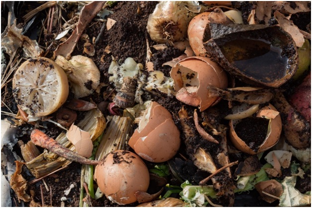 Soil Amendments From Rubbish Removal – Free, Non-toxic, and Effective!