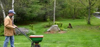 When And How You Should Be Fertilizing Your Yard